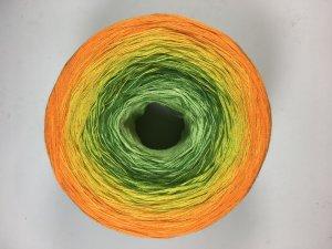 Farbenrausch 5008